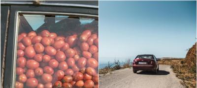 """""""Jeste li spakovali paradajz za odmor?"""" – a vi, gledajte svoja posla, može?"""