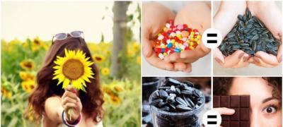 Šta se dešava vašem telu kada često jedete semenke suncokreta?