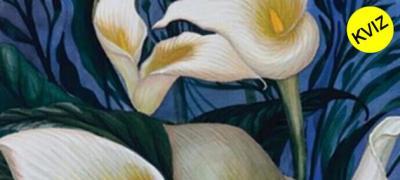 Odgovorite brzo: Šta ste prvo ugledali - ženu, cvet, masku ili list?
