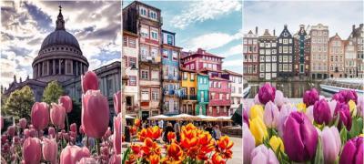 Najlepše Instagram fotke: Mesta širom sveta u prolećnom izdanju - sa procvetalim lalama